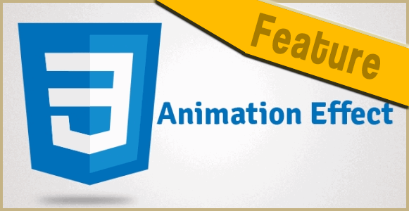 CSS3 Animation Effect